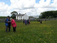 Visitors identify wildflowers in the Great Meadow.