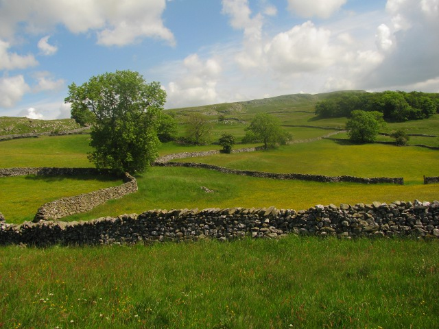 Dry Stone Walls at Lower Winskill